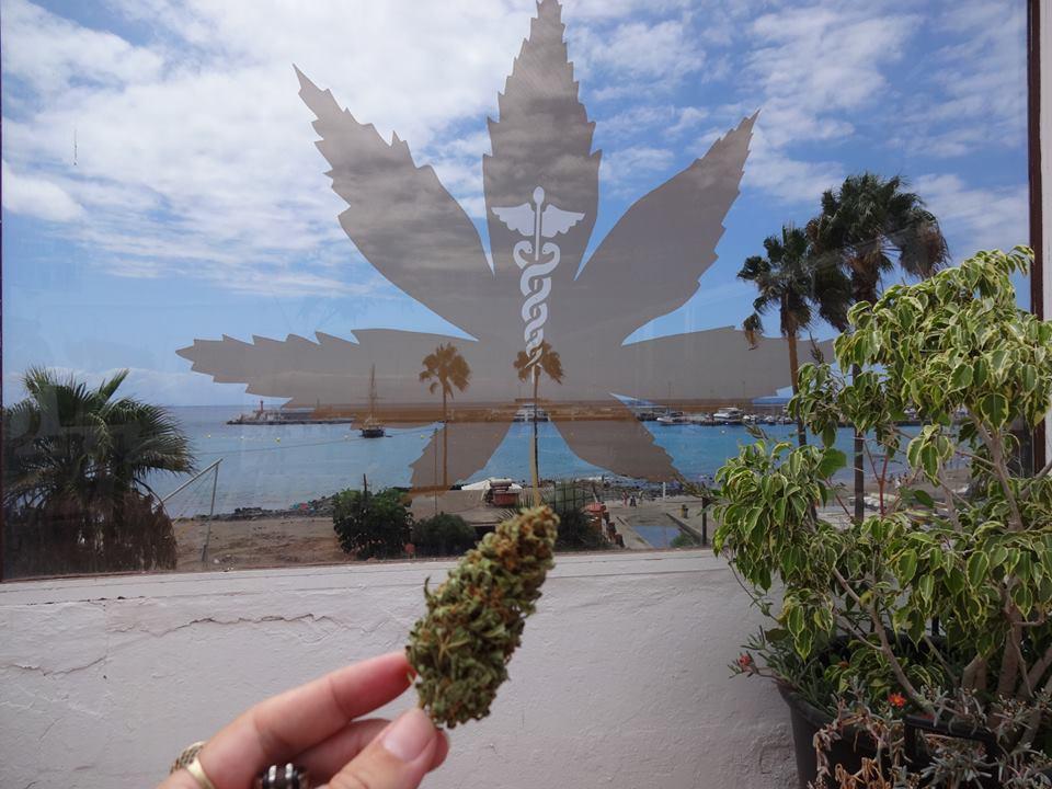 Тенерифе купить марихуану кошерная марихуана