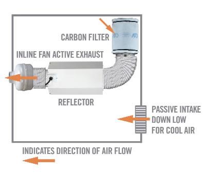 air flow grow