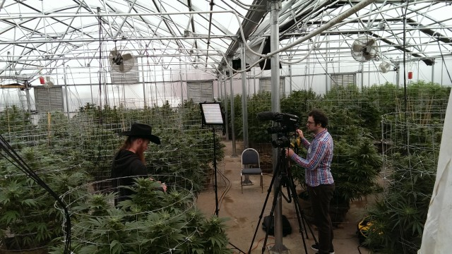 Interviewing Paul Tokin at River Rock Wellness in Denver.