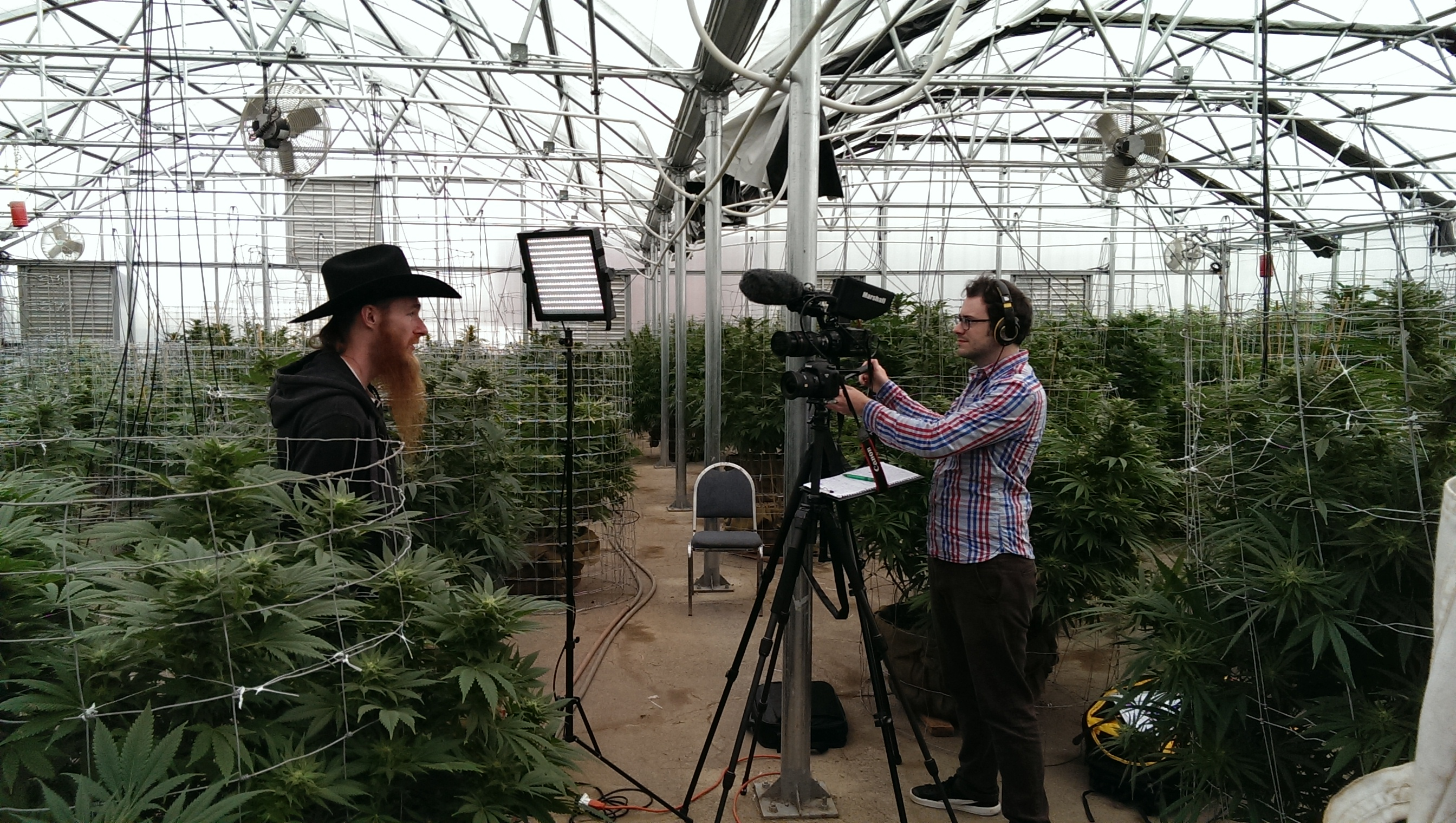 (Interviewing Paul Tokin in the grow-house at River Rock Wellness, Denver)