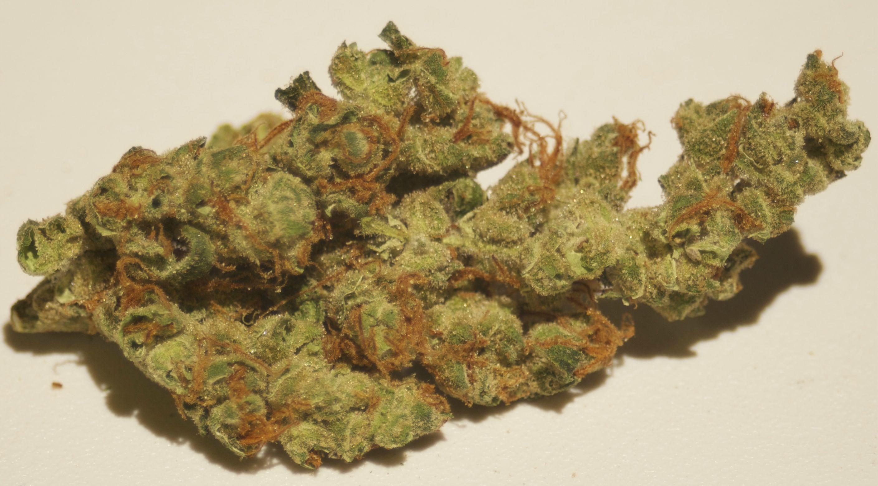 Super Silver Haze Marijuana Strain (Review) - Medical Jane