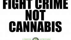 Fight crime, not cannabis