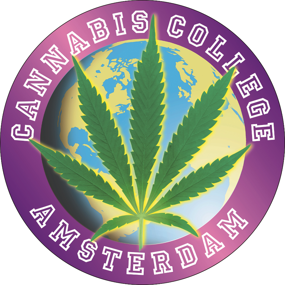 Cannabis College Ams