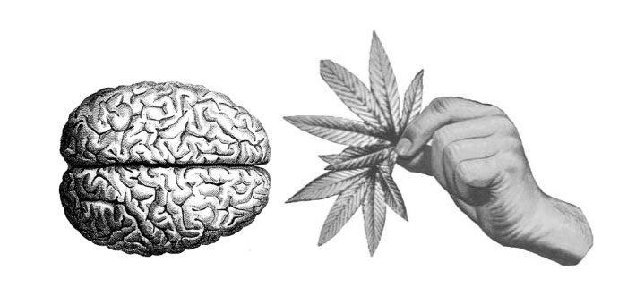 Suicide Cannabis