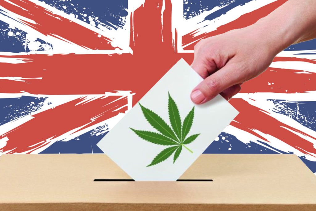 General Election: Vote for the candidate most likely to ...
